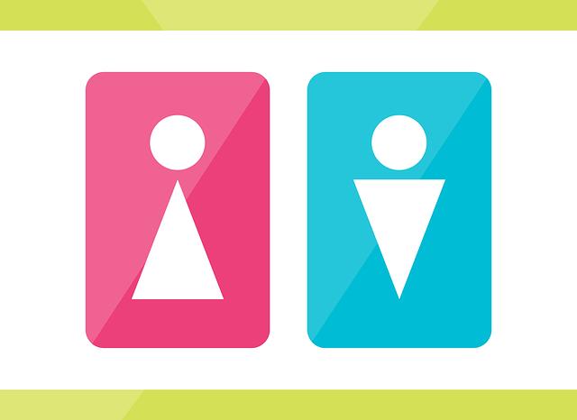 Gender und E-Learning